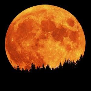 moon-7