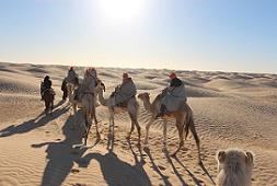 camel 3a
