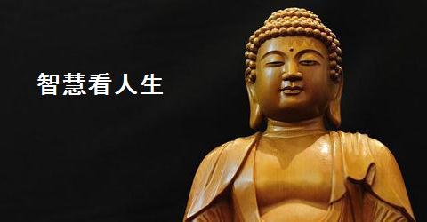 智慧看人生